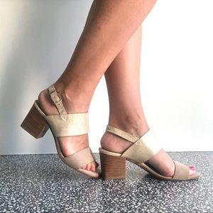 Alberto Fermani suede  & gold sandals Sz 38.5